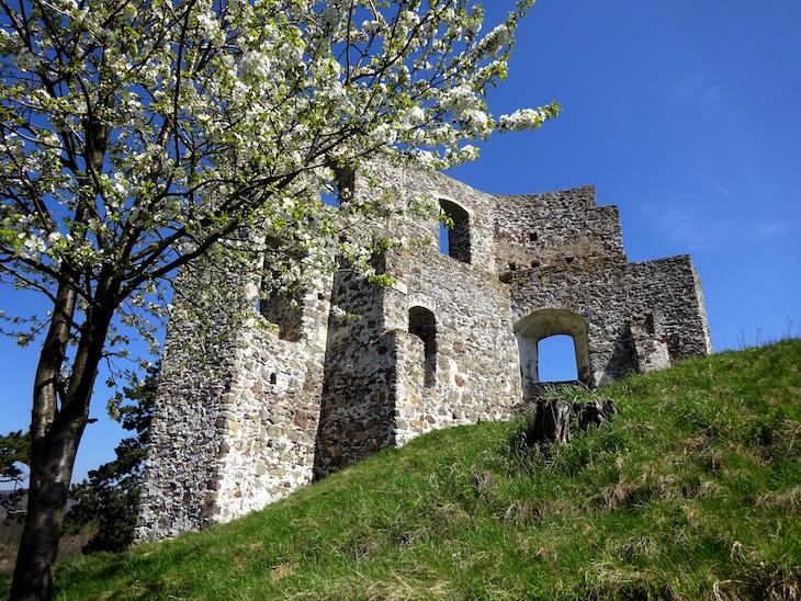 Zrúcaniny hradov - Dobrá Niva