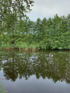 Rašelinové jazerá